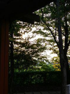 풍요로운 풍경을 볼수있다는 것은 이미 내안에 풍요로움이 있다는 것이다