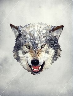 Wolf illustration from Luis Aguilera