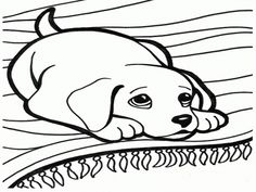 Dog And Cat Colouring Sheets Coloring Stylizr dogs and cats coloring pages 1600 X 1200 kju