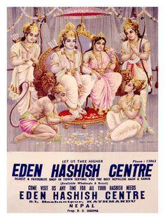 EDEN HASHISH CENTRE KATHMANDU , HINDU KUSH ...