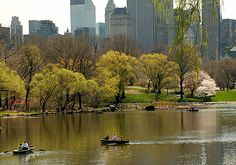 Boats on The Lake in Central Park