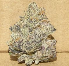 Awesome Krazy #marijuana Join Us at SmokeWeedEveryday.Org for More Weed Fun!