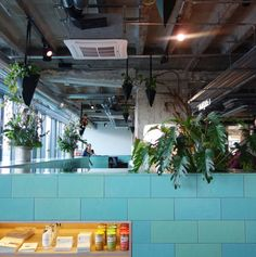 25hours Hotel Bikini Berlin in the heart of City West district in Berlin {turquoise cylinder block wall!}