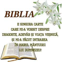 God Loves Me, Amin, My Love, Bible