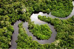 Бразилия. Полет над Амазонската джунгла.