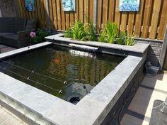 Vijver met plantenfilter google zoeken gardening for Koivijver aanleggen tips