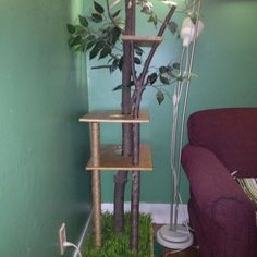 DIY cat tree for an indoor feline! 2013 TOH Dont Buy It, DIY It! Contest | thisoldhouse.com/yourTOH   ...........click here to find out more     http://googydog.com