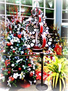 #Trinidad #Airport #Christmas Caribbean Christmas, Trinidad, Christmas Trees, Good Times, Literacy, Cheer, Holiday Decor, Ideas, Xmas Trees
