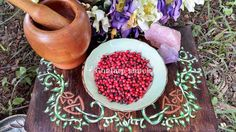 Abrus Seed Rosary Pea Conjure, pagan ritual supply, new age, wicca by ConjureShack on Amaranth