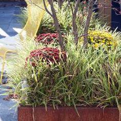 wohngarten im herbst mit roten betonstelen | garten mit stil, Garten und erstellen
