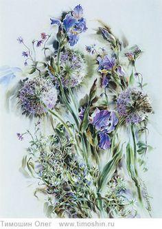 Spring. Irises