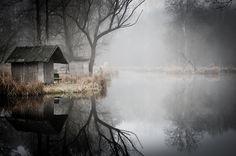 A sólo unos kilómetros del bullicio de Budapest (Hungría) hay un lugar invadido por la nieblaen el que reina el silencio y el tiempo parece haberse detenido para siempre: un pequeño pueblo pescador abandonado