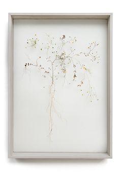 Flower construction #38 (w:50 h:70 d:6.5 cm)   Anne ten Donkelaar Pressed Flower Art, Nature Collection, Botanical Drawings, Indian Home Decor, How To Preserve Flowers, Aesthetic Design, Flower Frame, Ikebana, Tree Art