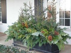 Outdoor planters to add winter interest.