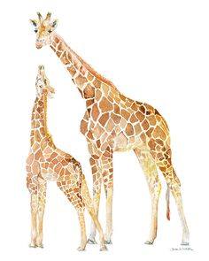 Mother and Baby Giraffes watercolor giclée reproduction. Portrait/vertical orientation. Printed on fine art paper using archival pigment inks. This quality prin