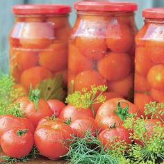 Canning Pickles, Romanian Food, Cooking Recipes, Healthy Recipes, Diy Food, Vegetable Recipes, Carne, Healthy Life, Brunch
