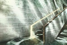 Convergence de la terre et de l'eau environnante, la Casa Brutale imaginée par l'agence OPA pénètre au sein de la…