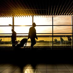 Two major airport security checkpoint expediting services have announced expansion plans in the past 10 days—meaning there soon will be more options for travelers to breeze through airport security. USA Today reports that the Transportation Security Administration's PreCheck program will grow to ...