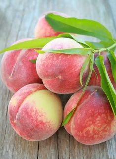 True royalty, the Texas Royal Peach Tree produces a large, sweet and juicy peach. Fruit And Veg, Fruits And Vegetables, Fresh Fruit, Como Plantar Pitaya, Fruits Photos, Fruit Picture, Fruit Photography, Peach Trees, Fruit Painting