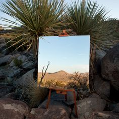 Mirrors on Easels Create the Illusion of Desert Landscape Paintings in California's Joshua Tree National Park