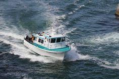 Oregons premier charter fishing and whale watching service, Dockside Charters, Deep Sea adventure Halibut Fishing, Tuna Fishing, Oregon Beaches, Oregon Coast, Depoe Bay Oregon, Adventure Of The Seas, Fishing Charters, Camping Spots, Deep Sea Fishing