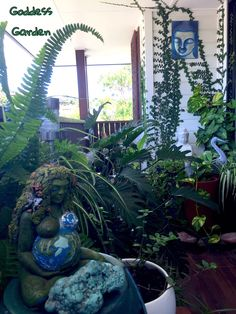 When I can't get outdoors to Nature I have my little 'Goddess Garden' made on a small front verandah. I sit listening to the sounds of my Millenial Gaia water fountain as I glance over to Kuan Yin and Tara, surrounded by greenery and feel the tensions just slip away... #goddessgarden #gaia #millenialgaia #garden #verandah #gardening #kuanyin #tara #mothernature #nature #shikoba #potplants #potplantgarden #wildwomansisterhood #findpeace #peace