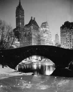 Footbridge over a pond, Gapstow Bridge, Central Park, Manhattan, New York City, New York, USA