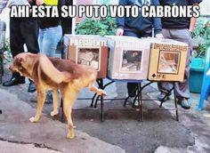 ♯☻♯ Ríe a carcajadas con humor grafico gay, chistes buenos largos, humor para solteros, gifs in one canvas y memes unam ➬➬ http://www.diverint.com/memes-espanol-facebook-distinguir-hierbas/