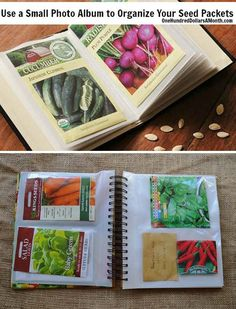 Use an old photo album to create a clever seed packet organizer | Clever Gardening Ideas on Low Budget