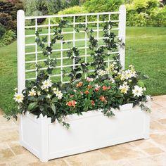 Flower Box With Trellis | Decor & Garden | Brylanehome
