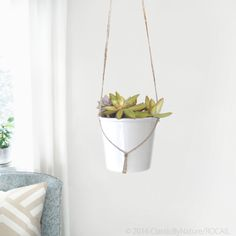 Modern & minimalist macrame plant hanger | DIY hanging planters | Natural beige jute twine pot holder | Indoor garden | Spring home decor by ClassicByNature on Etsy