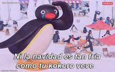 Pingu Memes, Memes Amor, Cute Love Memes, Memes Funny Faces, Dog Halloween, Reaction Pictures, Alter, Kawaii Anime, Penguins