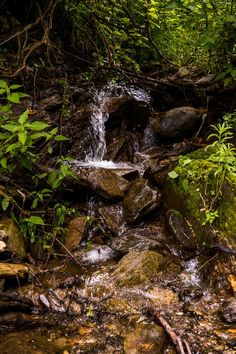 waterfall under dark forest