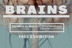 Brains: welcome collection