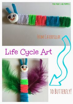 Butterfly Life Cycle Kids' Art Activity