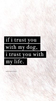 dog mom Check out ourfree hd dog quote wallpapers - dog Quotes Wallpaper For Mobile, Dog Wallpaper, Handy Wallpaper, Screen Wallpaper, Best Dog Toys, Best Dogs, Diy Pet, Animal Quotes, Quotes On Dogs