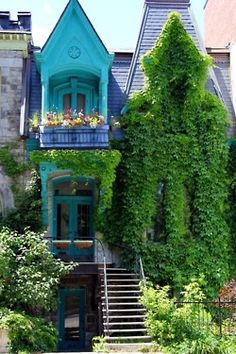 Windows that aren't hidden by ivy are painted a whimsical shade of blue!