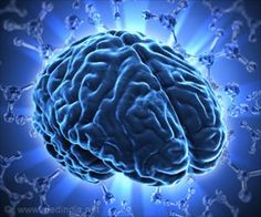 Stem Cell Therapy Can be the Best Option to Treat Damage in Brain Tissue