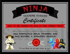 SOFORTIGE DL  Ninjago Fortbildungszertifikat  Ninjago
