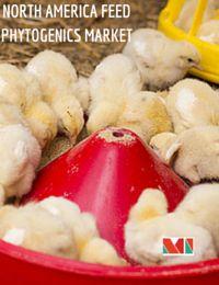 North America Feed Phytogenics Market