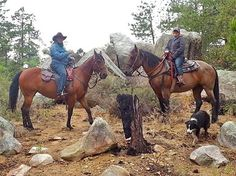 Prescott camp :)  www.horsebackarizona.com