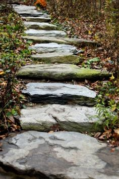Can you imagine walking up these stairs on your way to the alter? Perfect for an outdoor fall wedding!