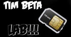 tim beta lab - Pesquisa Google   TIM Beta   Pinterest   Favors, Search and Tim o'brien