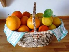 Agriturismo Limoneto, Sicily. The production focuses mainly on lemons, but we also grow a variety of oranges, olives which give an excellent extra virgin olive oil, almonds, wheat and vegetables http://www.organicholidays.co.uk/at/740.htm