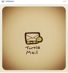 Not snail mail. Sweet Turtles, Cute Turtles, Baby Turtles, Cute Turtle Drawings, Cute Animal Drawings, Easy Drawings, Cartoon Turtle, Cartoon Art, Cute Cartoon