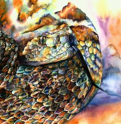 Rattle Snake by Christy Freeman