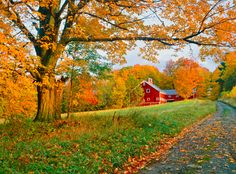 There's nothing better than a red, rustic barn, especially on a picturesque fall day in the countryside.