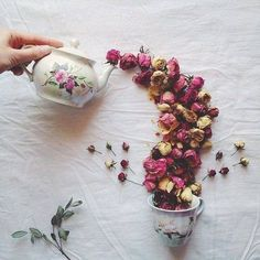 art, drawings, flowers, roses
