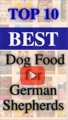 Healthy foods for dogs.We all want the best for our German Shepherds. They're sweet, fun-loving dogs who love being a part of our lives.Here is the list of Top 10 Best Dog Food for German Shepherds.Follow us for more review videos,UPDATED RANKING MONTHLY! #healthy foods for dogs#dogs foodShepherd#funny german shepherd#german shepherd with baby#german shepherd funny#german shepherd#german shepherd quotes funny#german shepherd funny quotes#cute german shepherd funny Baby German Shepherds, Best Dog Food Brands, Healthy Foods, Healthy Recipes, Fun Loving, Dog Love, Best Dogs, Dog Food Recipes, Funny Quotes