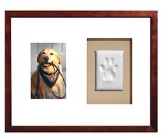 I need to do this for my dog I just put down.  I had brown paint and got his paw print to keep forever... need to frame it with a picture of him now. ♥ ♥